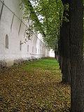 Yar walls.JPG