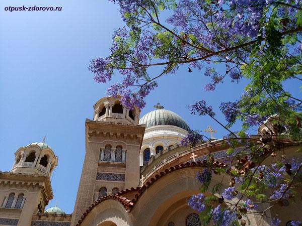 Цветущие деревья у собора апостола Андрея, Патры